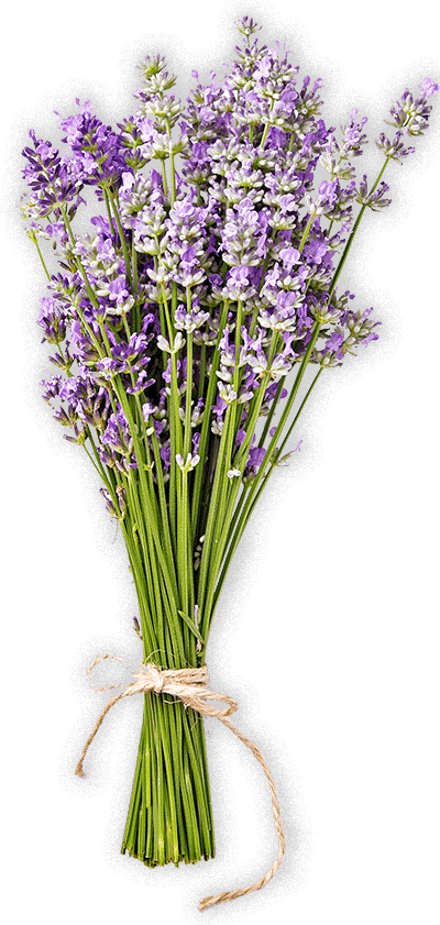 soins creme serum anti rides visage bio huiles bio savon bio hydrolat bio